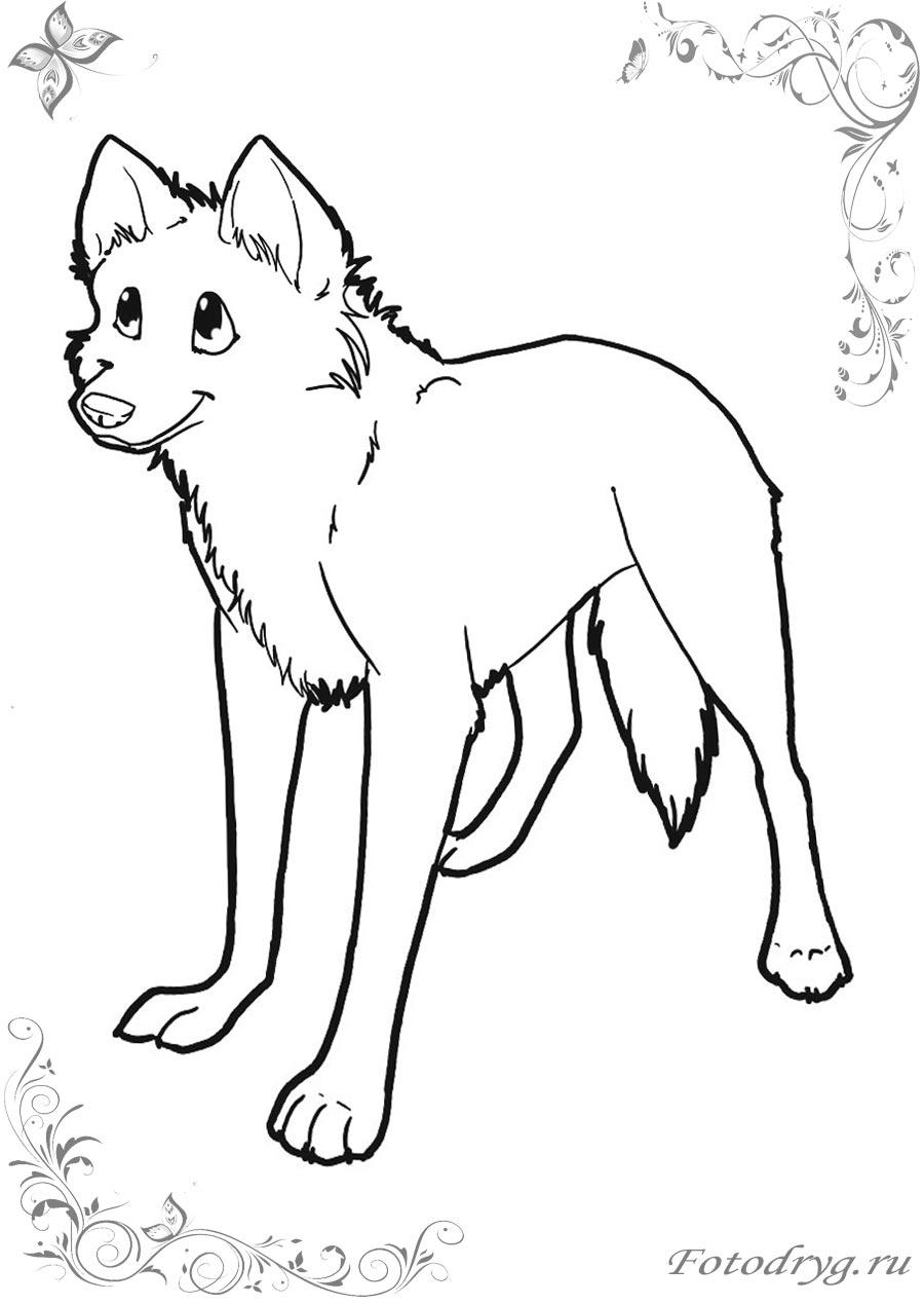 Картинка раскраска волк для детей на прозрачном фоне